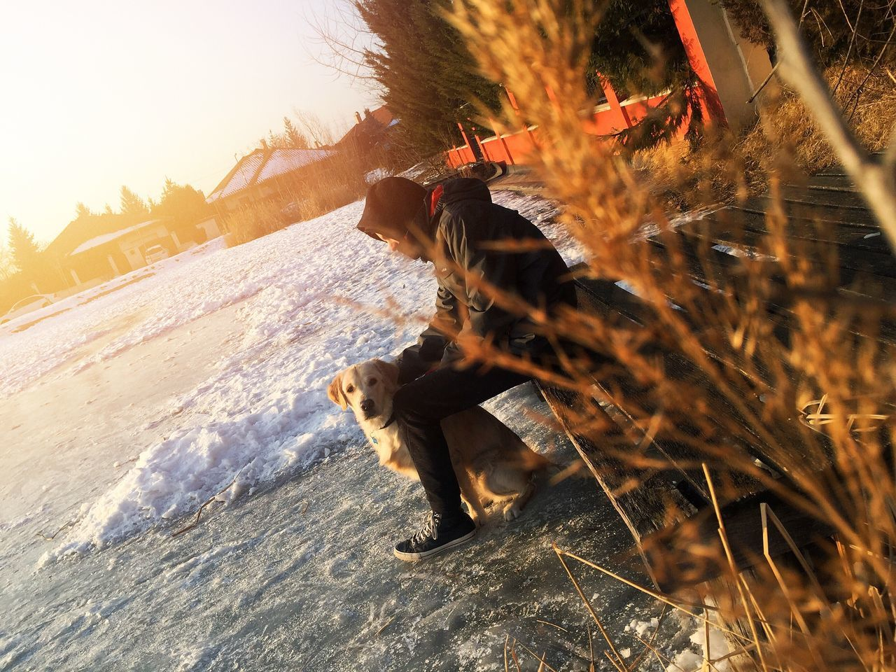 My Goldenretriever🐶| It was an incredible afternoon with my dog and my brother! Pets Goldenretriever Winter Brother Golden Hour Lake Ice Sunset