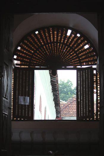Windows Sea Shells Acustic  Enjoying The View Window Vintage Fashion Breathing Space