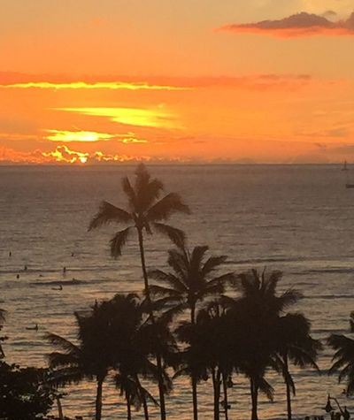 Pacific Sky Palm Trees 🌴 Pacific Sunset Island Of Oahu, Hawaii Oahu / Hawaii Oahu Hawaii Oahu, Hawaii Oahu Ocean View Ocean Sunset  Ocean Sky No People No Edit/no Filter Orange Color Orange Sky Cloudscape Clouds & Sky Yellow Color Pacific Ocean View An Eye For Travel