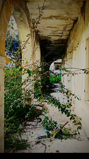 Taking Photos Check This Out EyeEm Best Edits Nature_collection Old Buildings Oldoldoldold Lefthome Eyem Best Shots Cyprus EyeEm Gallery