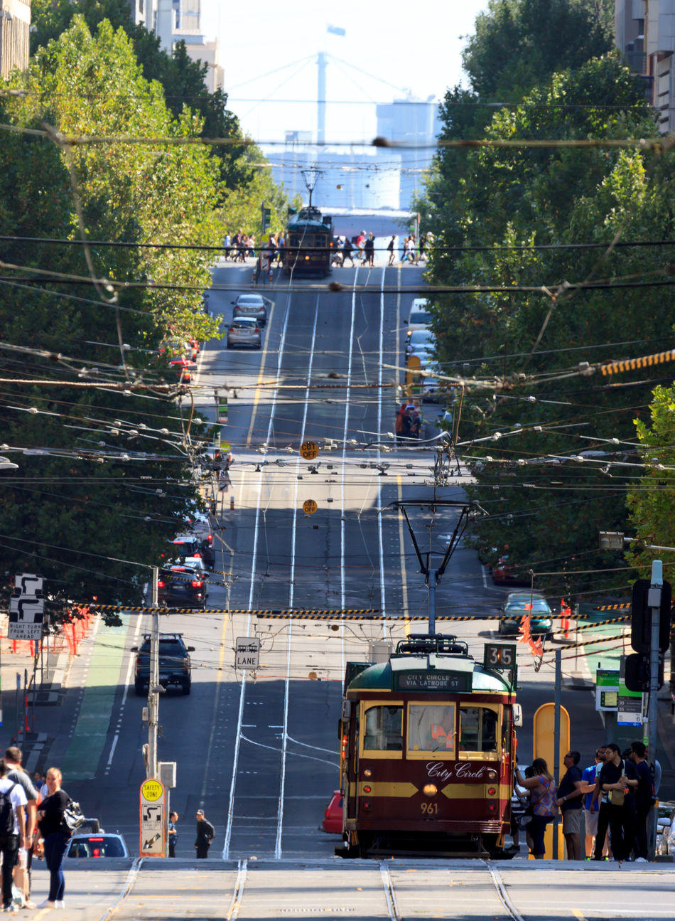 Trams coming down a hill in Melbourne Architecture Building Exterior Built Structure Cable City City Life Cityscape Day Eye4photography  EyeEm Best Shots Group Of People Land Vehicle Lifestyles Mode Of Transport Nature Outdoors People Public Transportation Real People Tram Transportation Tree