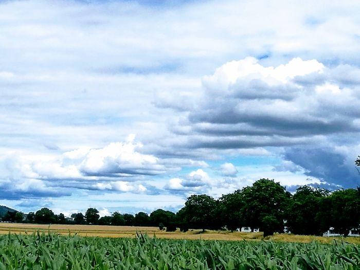 Sommergefühle Cloud - Sky Landscape Beauty In Nature
