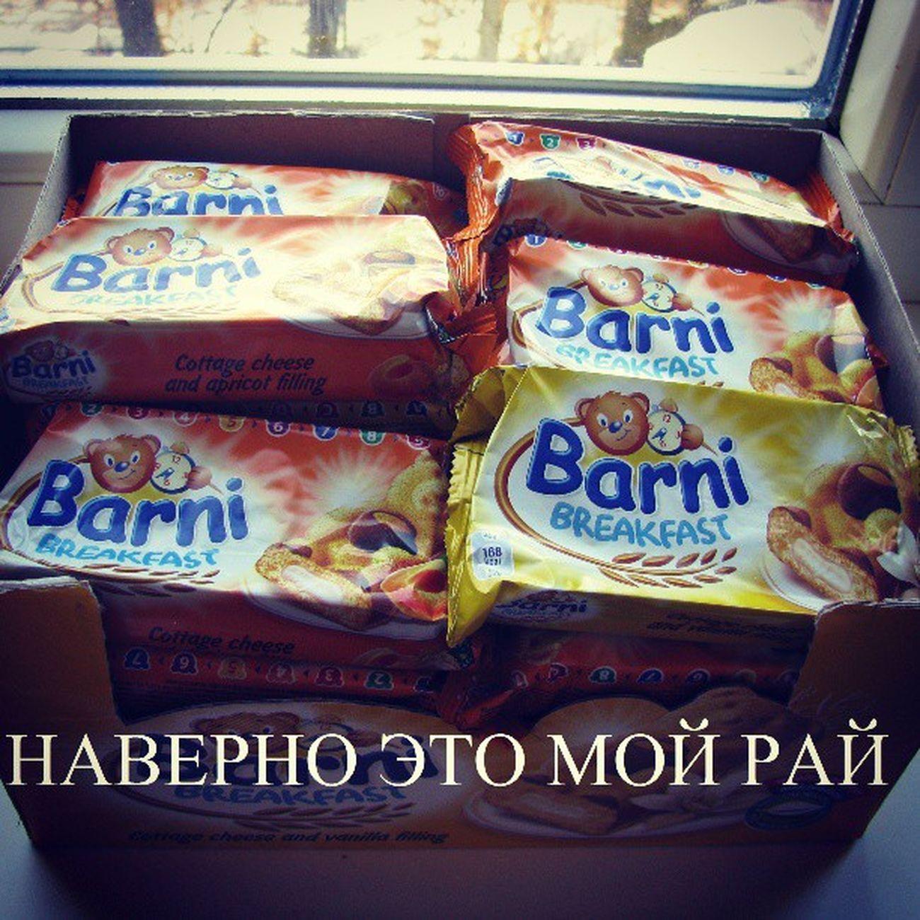Barni Bear Omnomnom Photo present sweet nice swag cookies instagram eat instagood bestgram