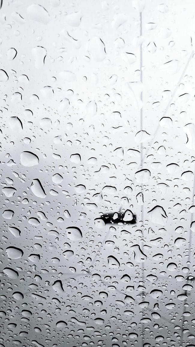 Rain Rainy Days Car Austria Salzburg Rain Every Day Weather Spring In The City Spring In Austria