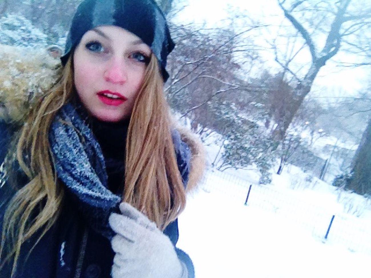 Central Park Tutta Neve Fa Poco Freddo è Un Sogno Faccia Da Culo Mode On Ma Sti Cazzi New York Let It Snow