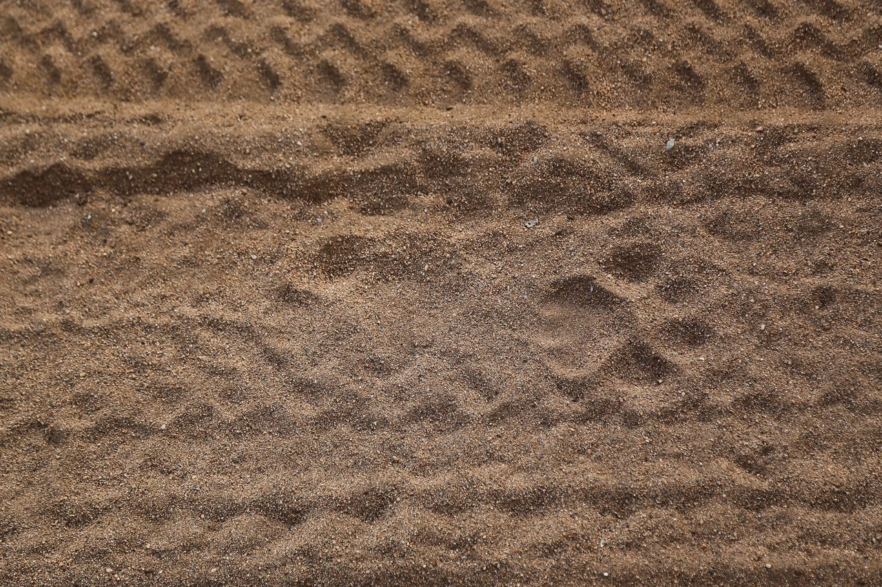 Sand Beach Backgrounds Full Frame Pattern High Angle View Nature Sunlight Shore Day No People Tranquility Outdoors Textured  Paw Print Animal Track Track - Imprint Beauty In Nature Lion Steps FootPrint Footprints In The Sand Footprints Lions Animal Themes