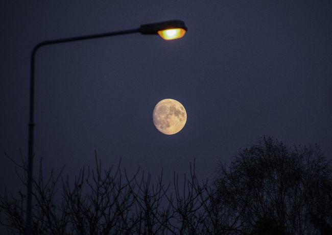 2016 Czerwiensk Evening Landscape Moon Moon Surface Night Poland Supermmoon