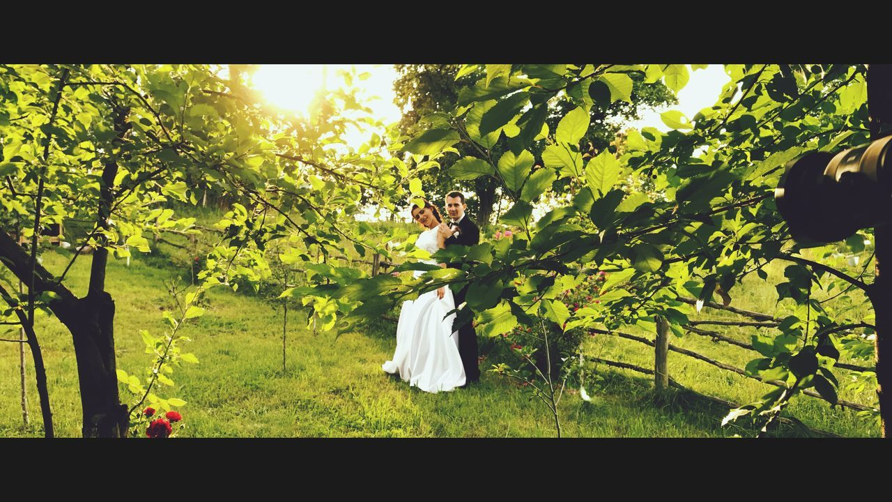 tree, growth, nature, love, wedding, women, real people, bride, beauty in nature, day, outdoors, freshness, men, plant, young women, bridegroom, branch, grass, wedding dress, full length, flower, young adult, one person, groom, people