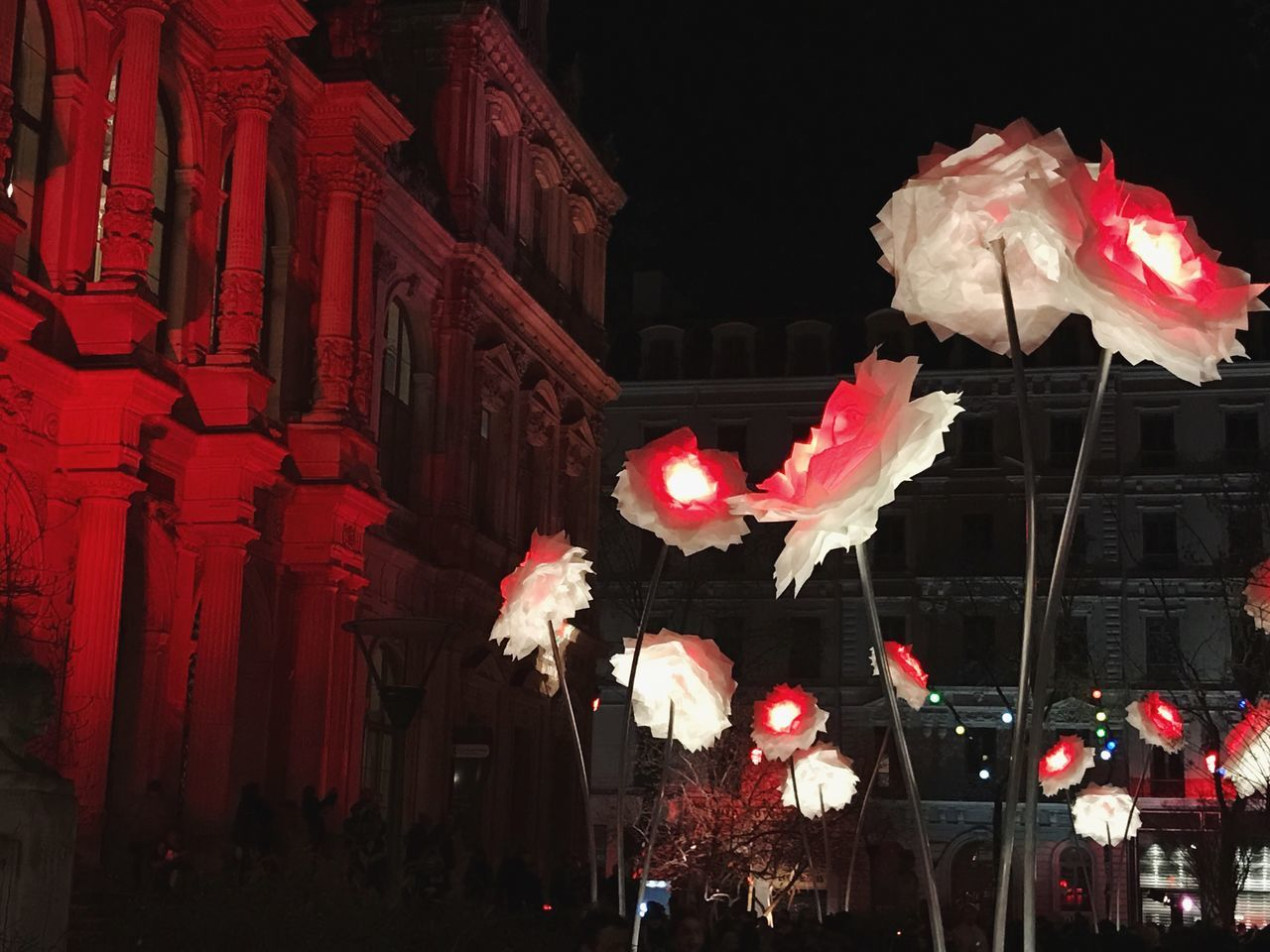 The Festival of Lights in Lyon Red Built Structure Flower No People Architecture Building Exterior Outdoors Parade Night France Lyon Fete Des Lumieres