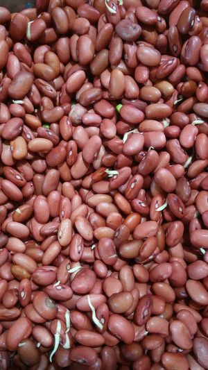 Gram Beans Pulses Sprouts Rajma