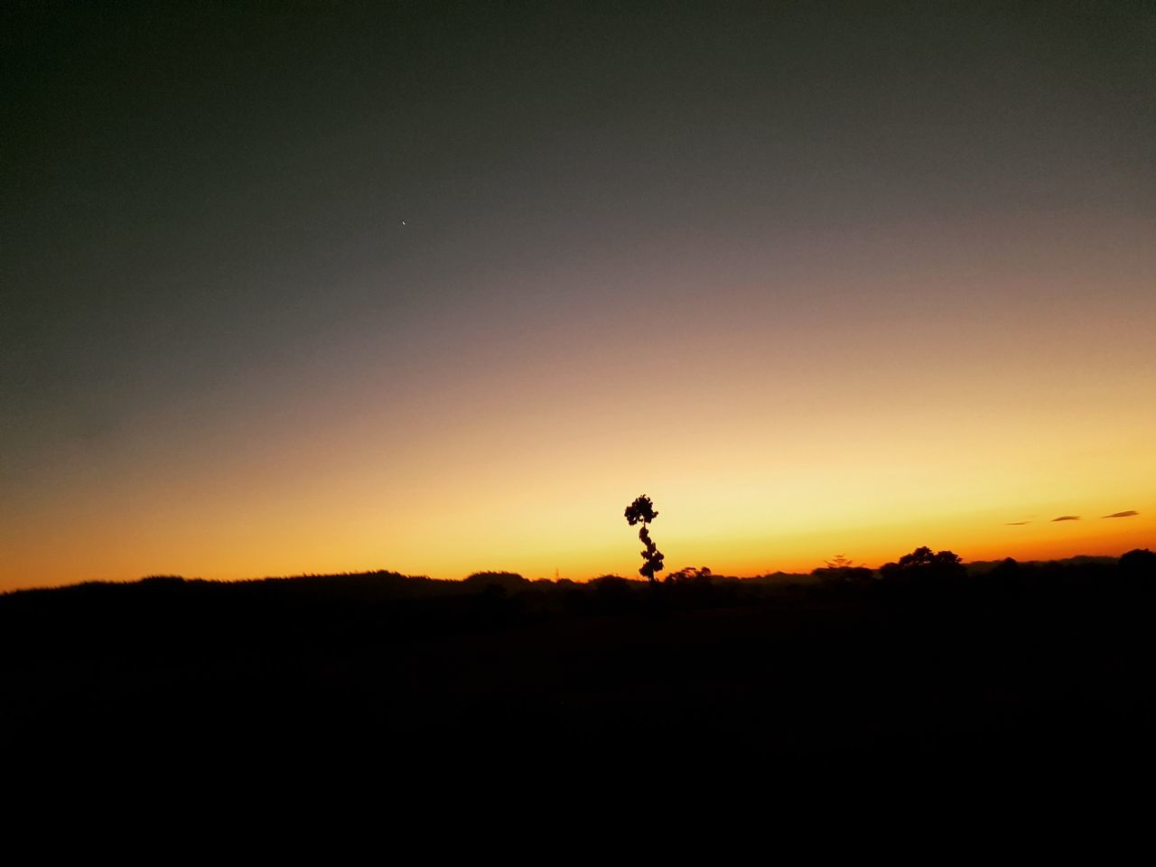 India Sunset Silhouette Nature Beauty In Nature Landscape Sky Outdoors Tourism Travel Destinations Assam