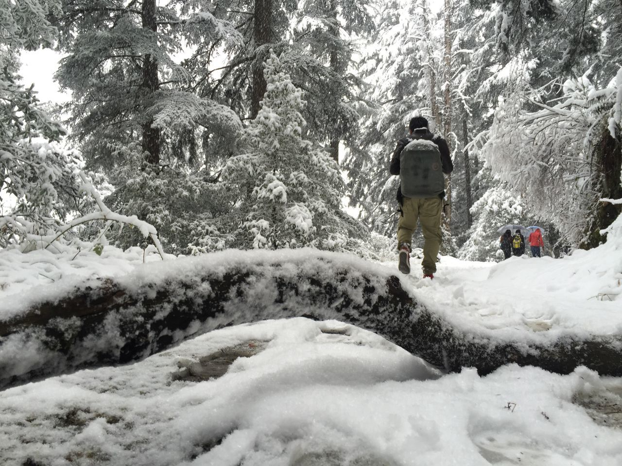Rear View Of Man Walking On Snow Covered Pathway At Mountain