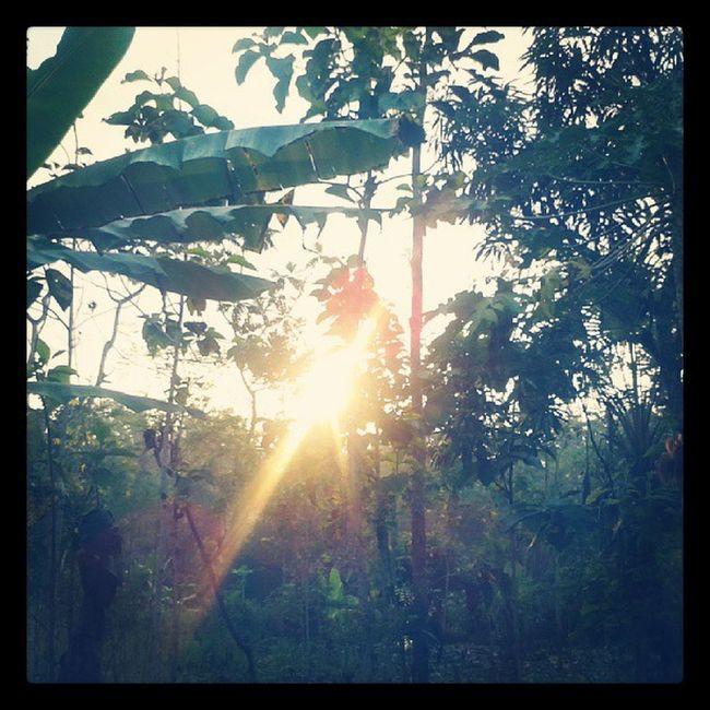Good morning from Sentolo Wates Kulonprogo Jogja Yogyakarta INDONESIA Home Instagood Instamoment Webstagram