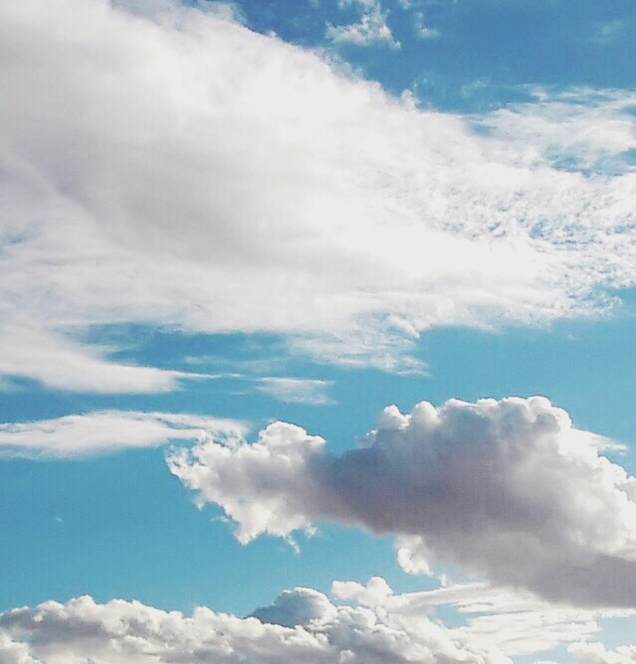 Balancing Saturation EyeEm Sunset #sun #clouds #skylovers #sky #nature #beautifulinnature #naturalbeauty #photography #landscape IPSMinimalism Enjoying Nature