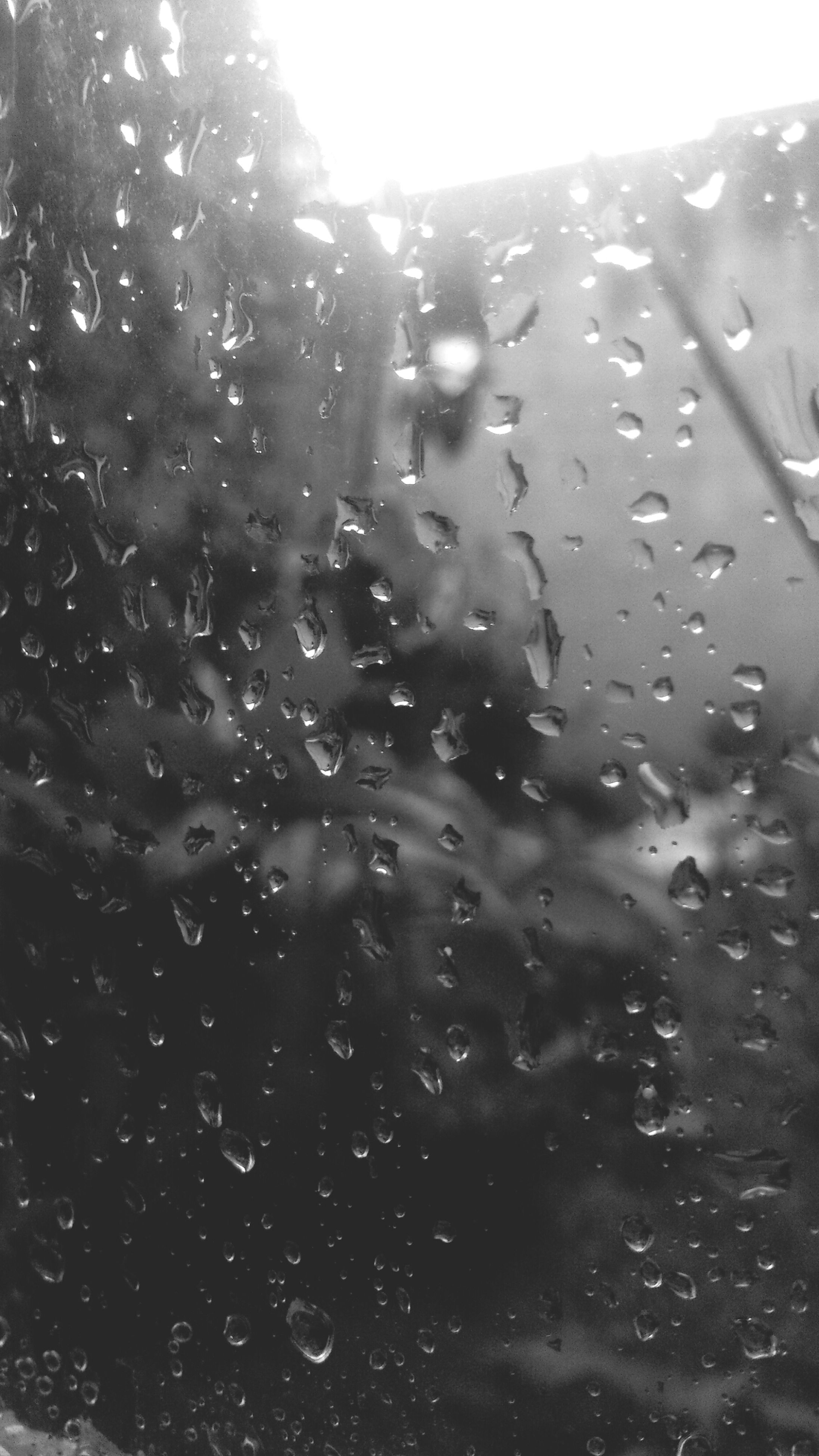drop, wet, water, window, rain, raindrop, transparent, weather, glass - material, season, close-up, focus on foreground, nature, sky, indoors, day, full frame, tree, no people, backgrounds