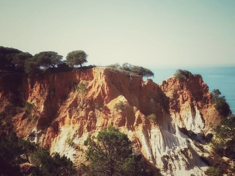 The KIOMI Collection Algarve Portugal Nature Red Cliffs Cliffs Landscape Sea Sea And Sky Trees Falésia Beach