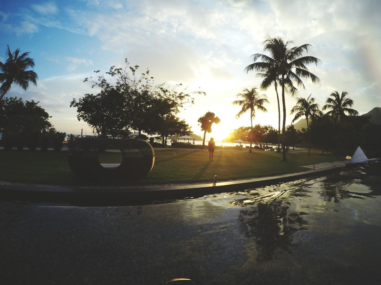 palm tree, tree, sky, sunset, water, silhouette, outdoors, cloud - sky, sun, nature, road, no people, beauty in nature, growth, scenics, day