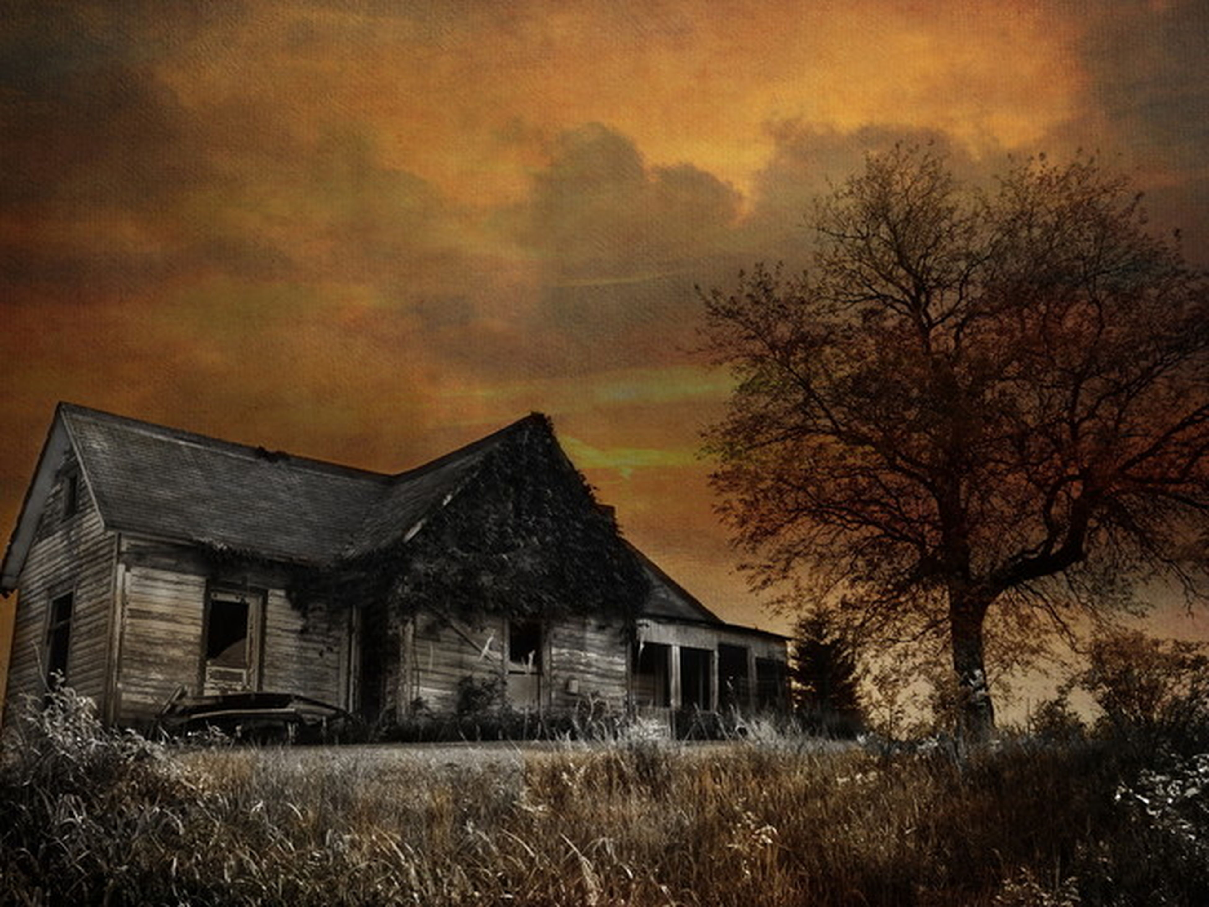 architecture, building exterior, built structure, house, sunset, sky, residential structure, orange color, residential building, cloud - sky, tree, bare tree, field, outdoors, nature, grass, no people, window, barn, rural scene