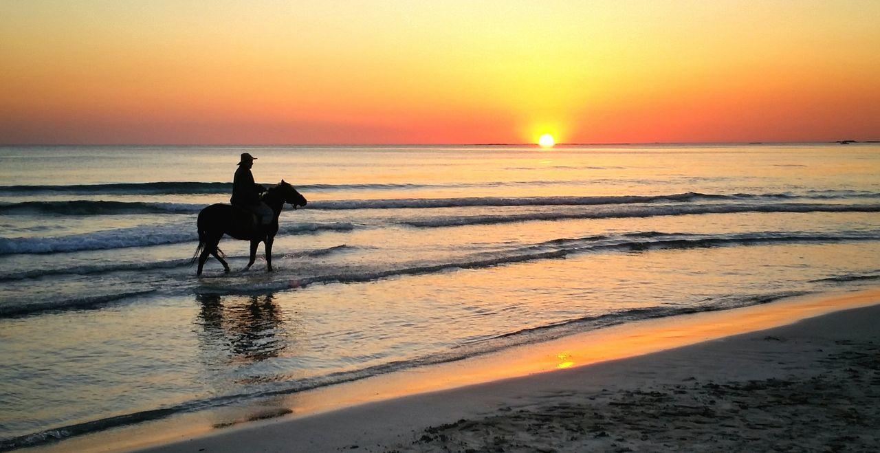 Horse Horse Riding Horse Photography  Horses Horse Life Horselove Sunset_collection Sunset Beach Sea Sand Working Animal Outdoors Silhouette Beauty In Nature Animal Themes Riding Animal Wildlife Landscape Sea And Sky Seascape EyeEm Best Shots EyeEm Nature Lover EyeEm Travel