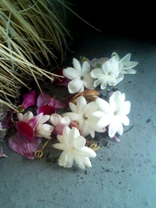 Flowers Swept Away