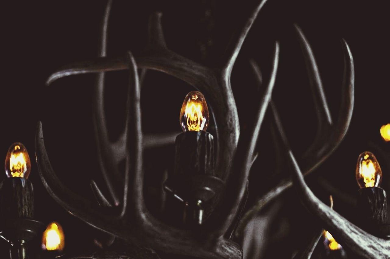 Close-Up Of Illuminated Horns In Dark Room