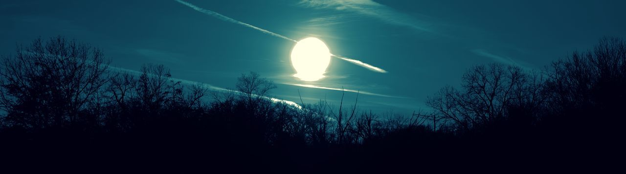 nature, tree, beauty in nature, outdoors, silhouette, no people, sky, tranquility, scenics, night, vapor trail, astronomy