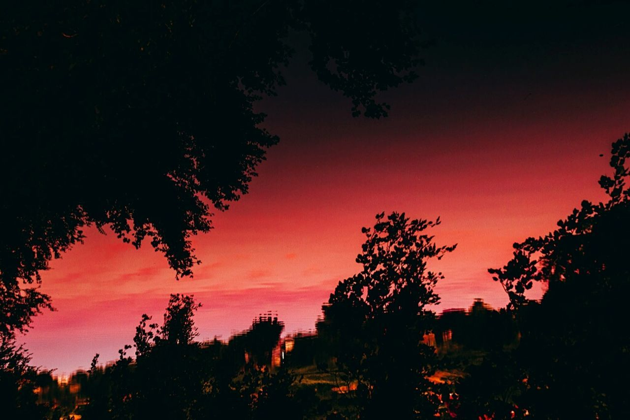 Reflejo Red Tree Sky Sunset Nature Beauty In Nature Silhouette Outdoors Landscape No People