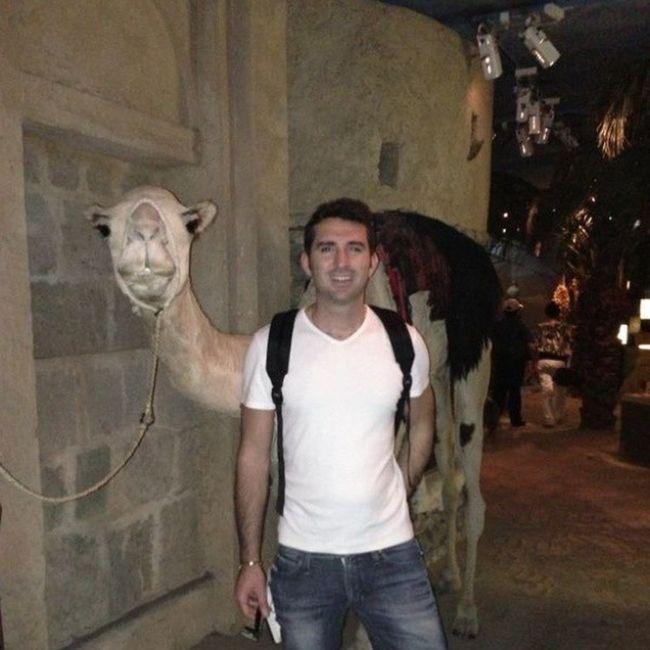 2 camels! Camel Dubai Museum Dubailand UAE Emirates Emirati Gulf Arabic Arab Dubaimuseum Bastakiya DXB ILoveUAE Iloveit OneLove Me Amazing Bestplace Bestoftheday Travel Trip Tourism Almaktoum OldDubai city