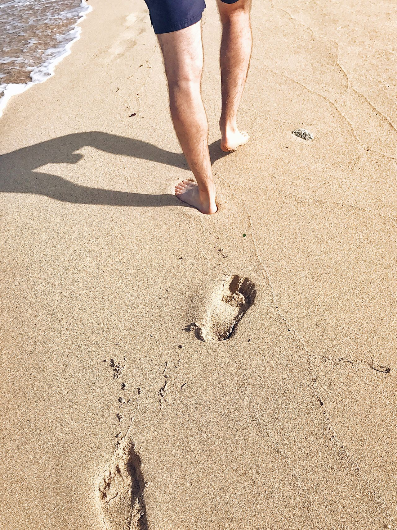 One of the things I like about the beach, is walking on it. The feeling I get on my toes makes me feel alive. Beach Sand FootPrint Sunlight Human Body Part Vacations Summer People Happy Feet Feet Marks On Sand Toes In The Sand Toes Sand & Sea Beach Life High Angle View Foot Steps