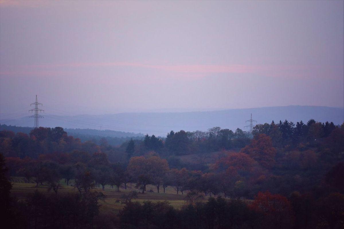 Meine geliebte Heimat an einem🌲🌳NOVEMBERABEND🌳🌲Es legen die Zeiten, die Stille bereiten, ein tröstendes Band der schläfrigen Ruhe hauchzart übers Land. Es gleiten die Stunden, dem Tage entbunden, ins Dunkel der Nacht, von friedlichem Schweigen umfangen so sacht. Es ruhen die Bäume. Sie träumen die Träume der wandelnden Zeit im Atem des Winters in Lautlosigkeit. (Elke Bräunling) Autumn Collection Autumn Colors Autumn🍁🍁🍁 Beauty In Nature Evening Glow Evening Light Evening Sky EyeEm Best Shots - Nature Eyeem Nature EyeEm Nature Lover Heimat My Homeland Homeland Ladyphotographerofthemonth Landscape_photography Landscapes Nature On Your Doorstep Nature_collection Naturelovers Naturephotography Naturesbeauty Scenics Silhouette Tranquil Scene Tranquility