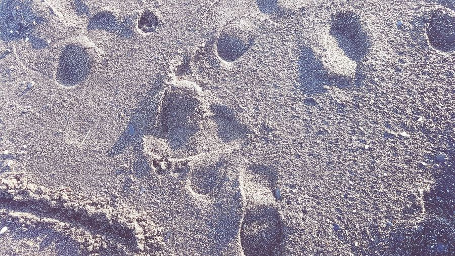 Full Frame Backgrounds Textured  Pattern Abstract No People Close-up Day Outdoors Sand Beach Holiday Footprints Footsteps Nature Natural Tones Shades Of White White Sand Walk On Beach SPAIN Wanderlust Tourist Destination Winter Sun White Escape
