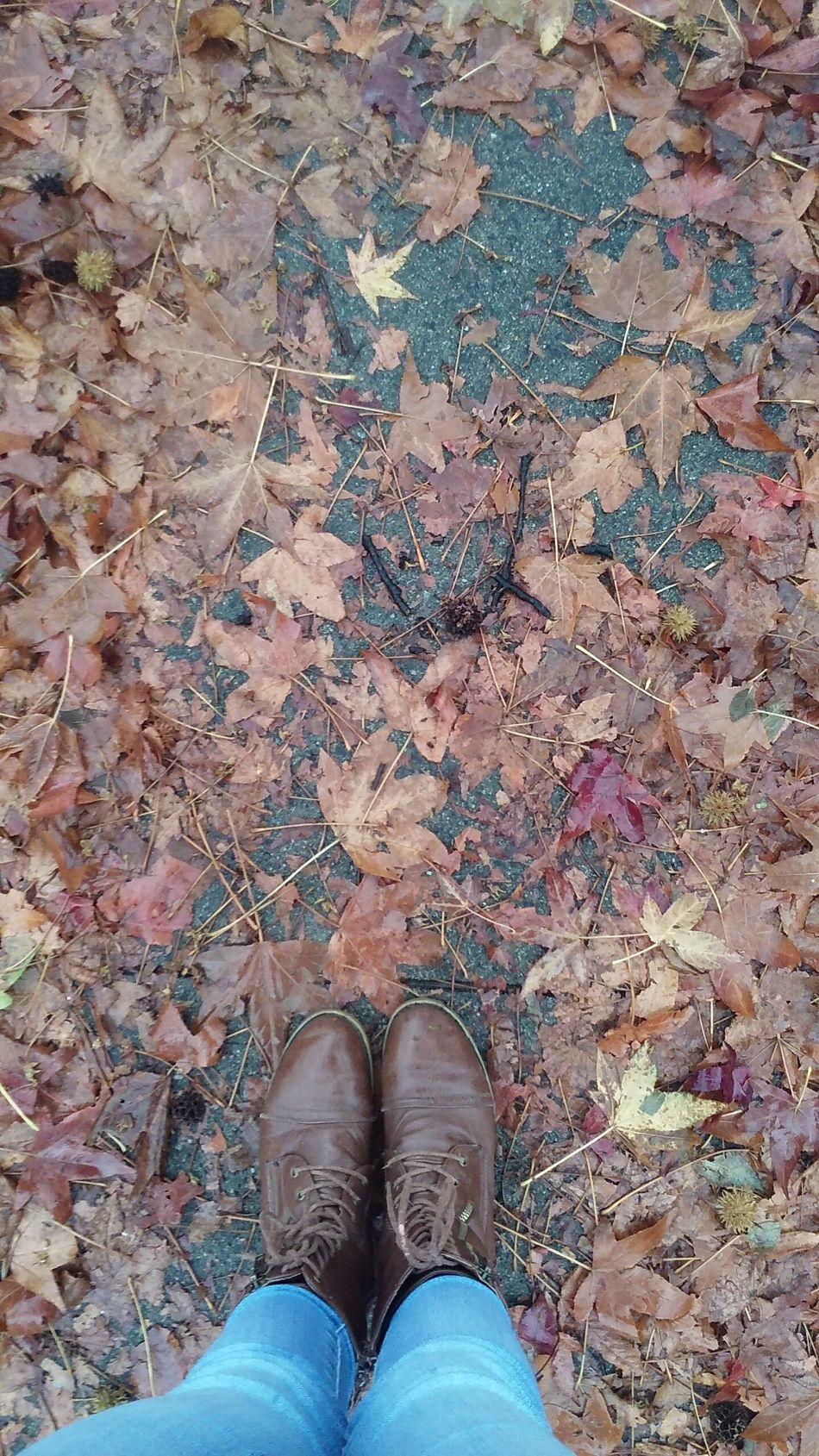 Fall Beauty In Nature Fallcolors Old Boots Sticks