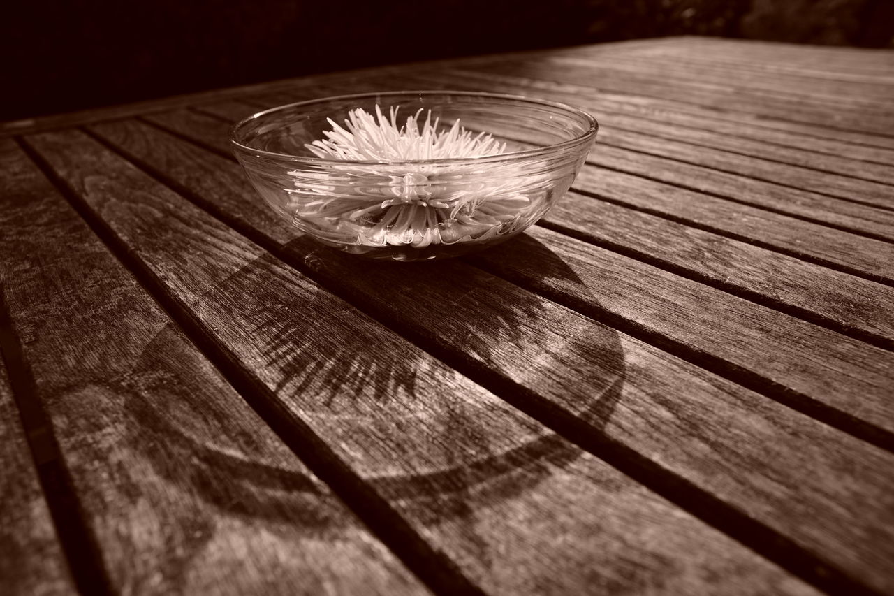 Glass bowl with flower head on a garden table Sunlight Asteraceae Backlighting Bowl Close-up Day Decoration Flower Flower Head Freshness Garden Garden Table Glass - Material Glass Bowl No People Outdoors Selective Focus Still Life Summer Sunlight And Shadow Table Table Decoration Water Wood - Material Wood Grain