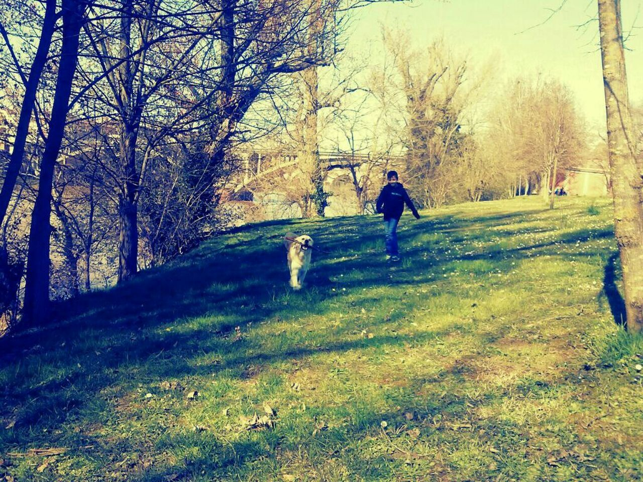 Ilovemydog MySON♥ Playing With The Animals Funnytime