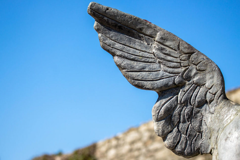 Angel wing Angel Angel Wings Art And Craft Clear Sky Close-up Low Angle View Sculpture Statue Wing