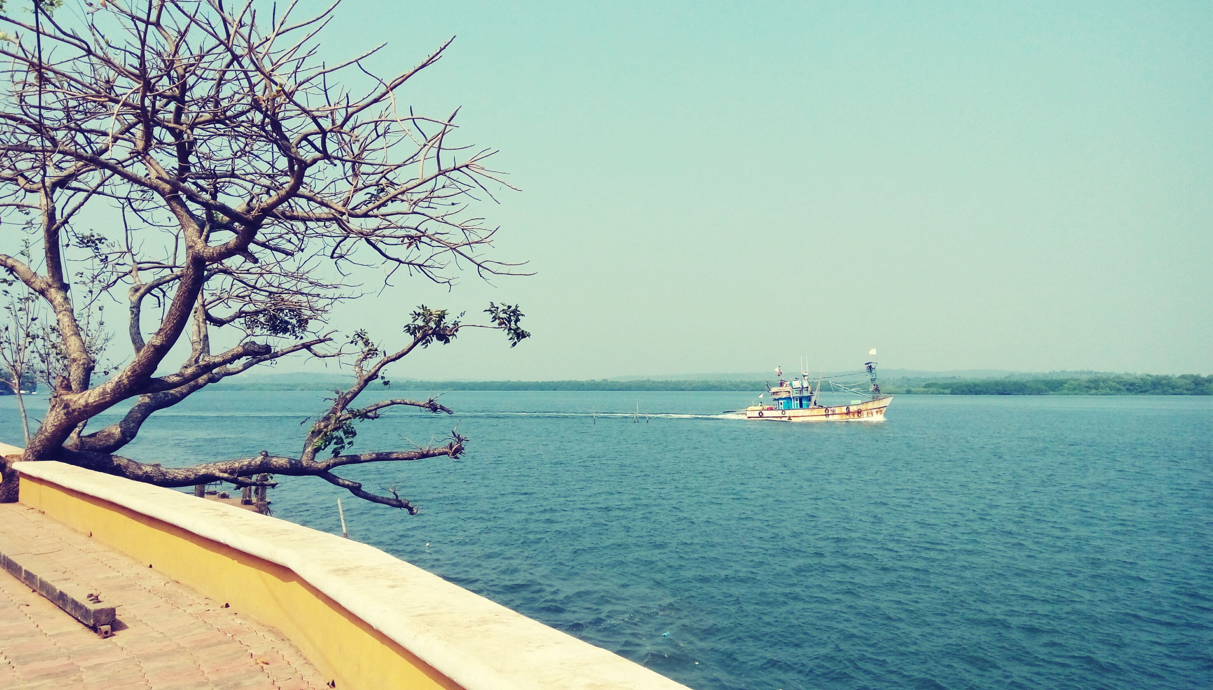 nautical vessel, water, transportation, boat, clear sky, sea, mode of transport, horizon over water, tranquility, tranquil scene, nature, copy space, moored, beauty in nature, blue, scenics, tree, day, beach, travel