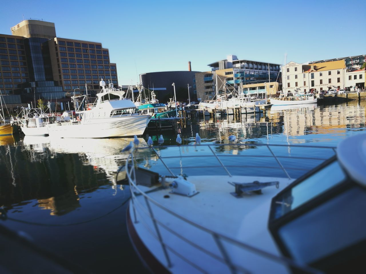 An evening stroll Nautical Vessel Reflection Moored Water Blue Harbor Clear Sky Yacht Sailboat Transportation No People Mode Of Transport Marina Day Tranquility Outdoors Recreational Boat Sailing Sky Yachting EyeEmNewHere Tranquility Sea Boats And Water Boats
