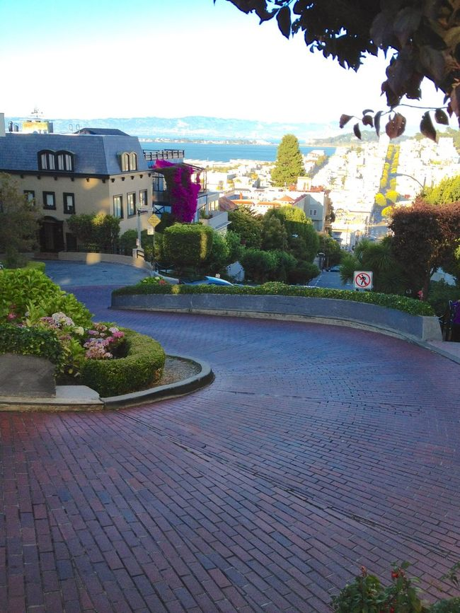 Lombard Street in San Francisco, the curviest street in the world. Curves Street Road Hill Vacation San Francisco California Vacations Tourist Attraction  Travel Tourism Lombard Street