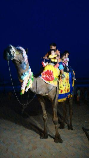 Joy Ride At Beach Of Gopalpur,Odisha