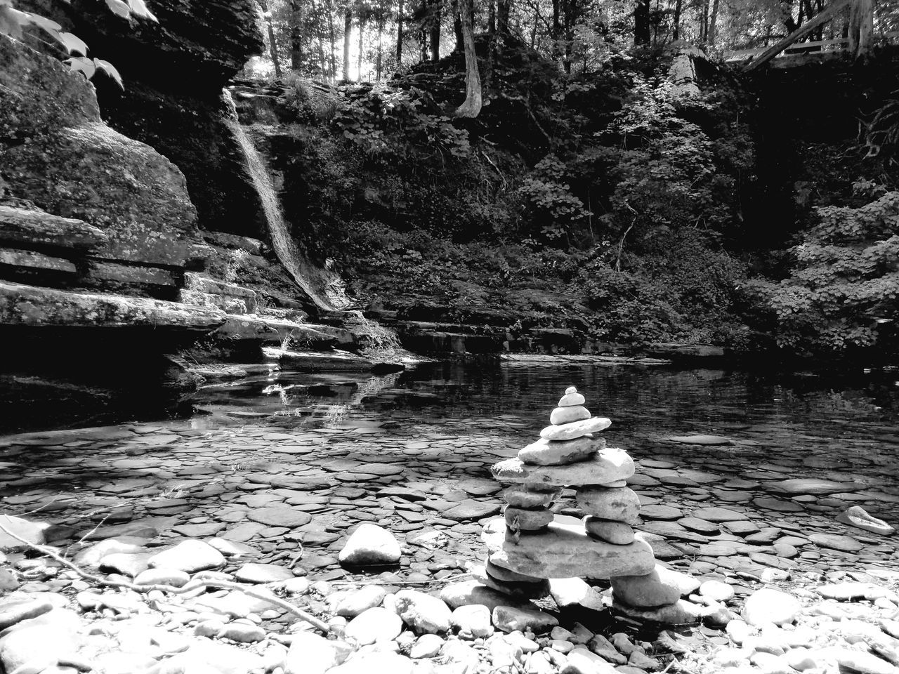rock - object, nature, water, full length, outdoors, growth, day, beauty in nature, no people, tree