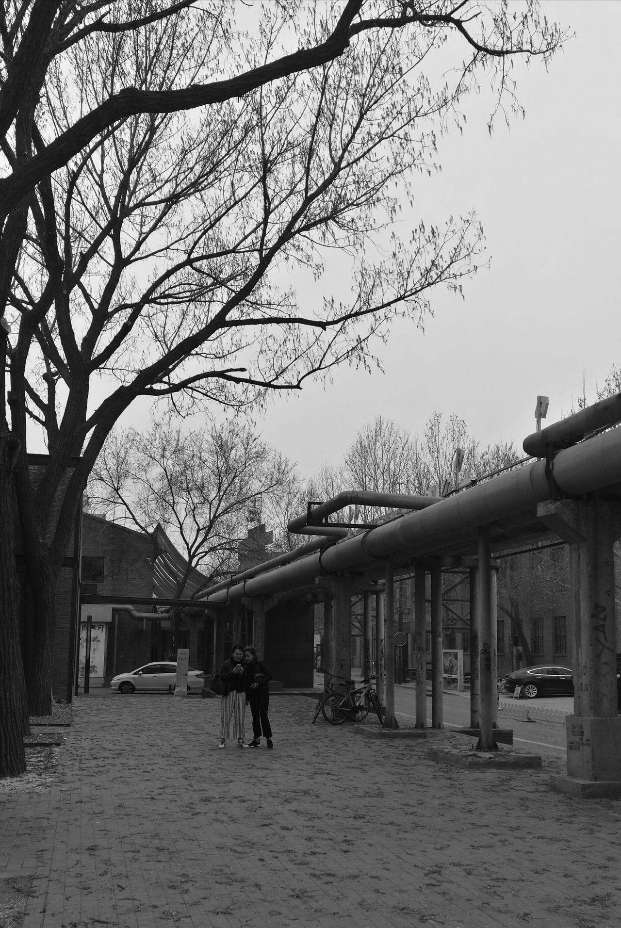 似春不似秋。 798 北京的春天 First Eyeem Photo