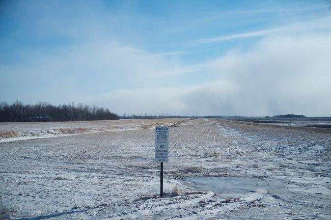 2-12-16 Cold Cold Temperature Day Desert Dirt Road Fargo Fog Horizon Over Land Landscape Motion Non-urban Scene North Dakota Outdoors Remote Scenics The Way Forward Tranquil Scene Tranquility Weather West Fargo Winter