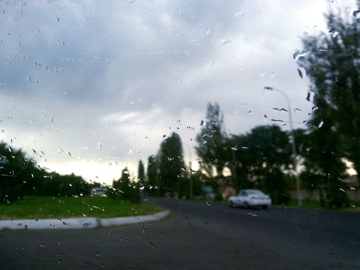 Heavyrainday Rainy Days Drops