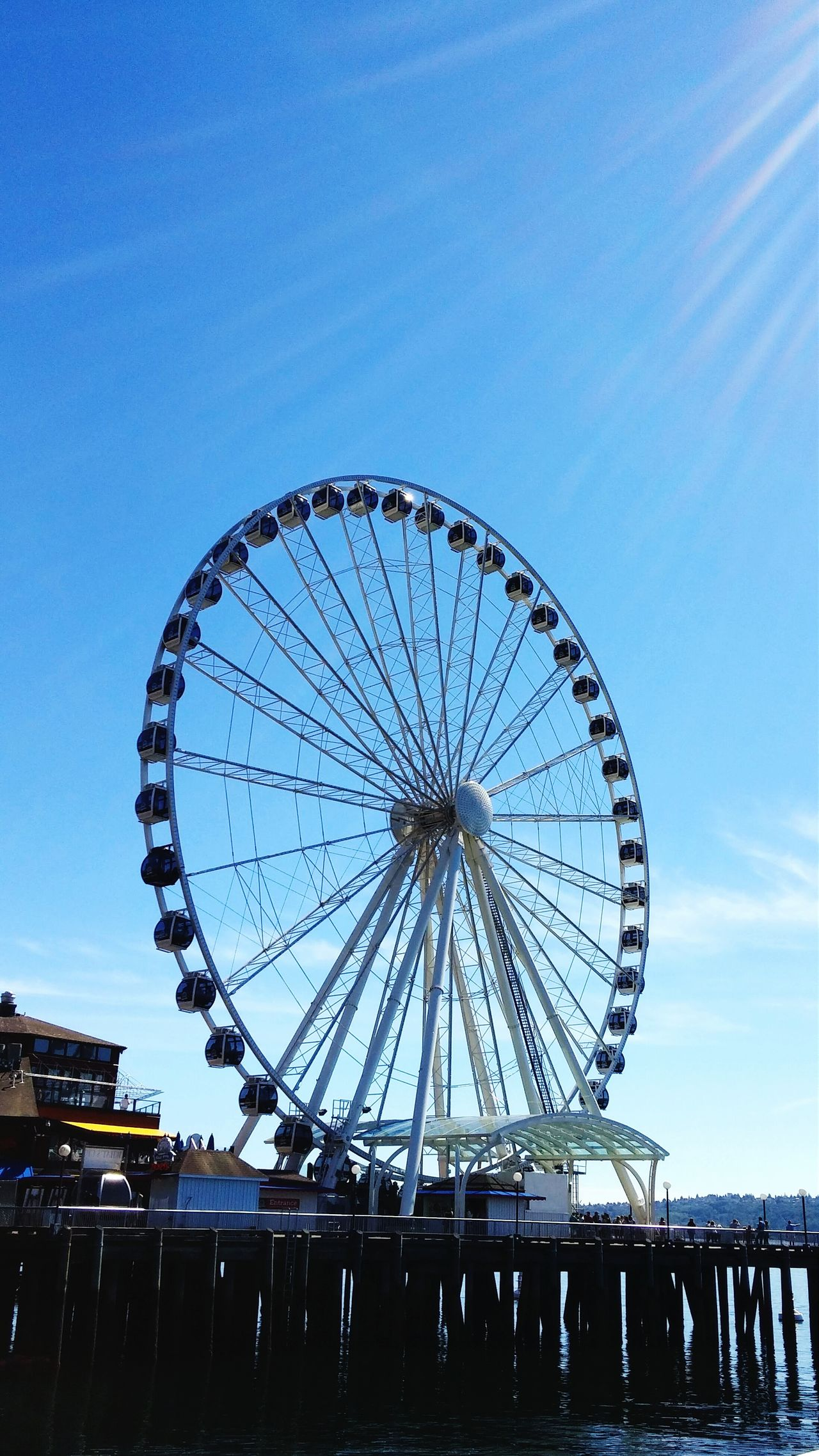 Summer Seattle We saw the wheel for the first time - loved it!