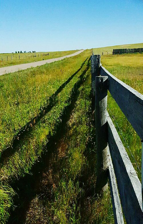 West fence line by country raod North Of Lusk Wyoming Wooden Fence United States Beautiful Summer Morning Out In The Country Tall Grass Blowing In The Wind Fence Weathered