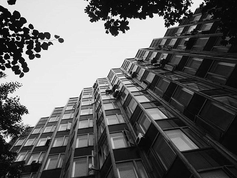 Rostovondon Rostov Architecture Geometry Sky Bw VSCO Vscocam Vscogram Vscogood Bw Blackandwhite Stairs Trees Leaves Vscorussia Russia SonyXperiaZ1Compact Xperiaphotography Mobilephotography Streetphotography Urban Building