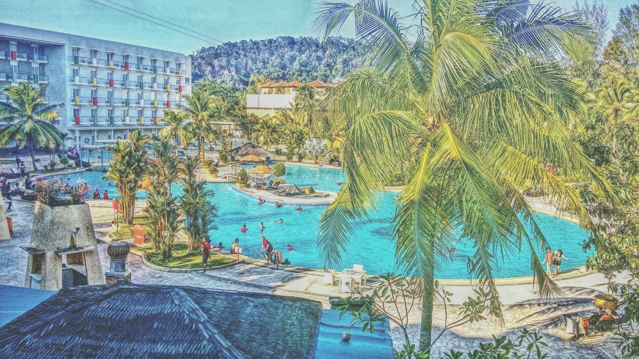 Summer ☀ Sunny☀ Malaysia Swimming Pool Hotel Palm Trees 1pm Phoneography Camera360