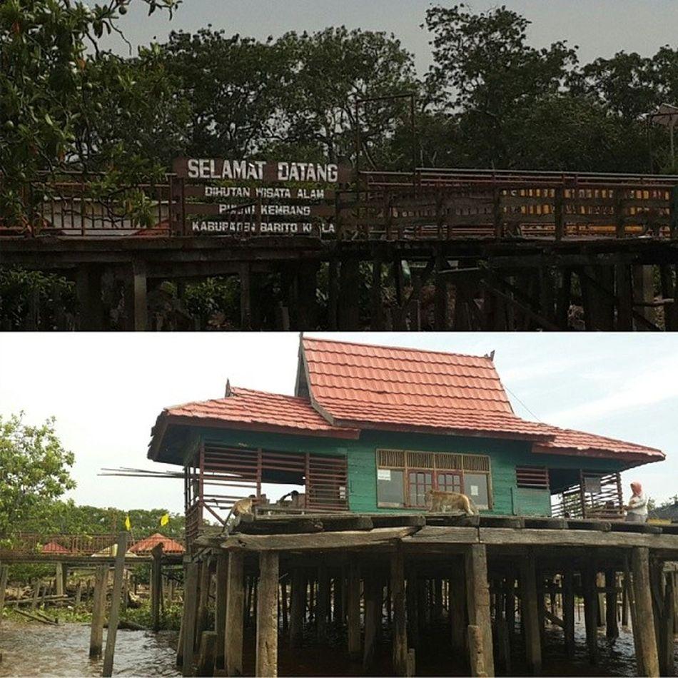 Visitkalsel Bjm Banjarmasin Pulaukembang