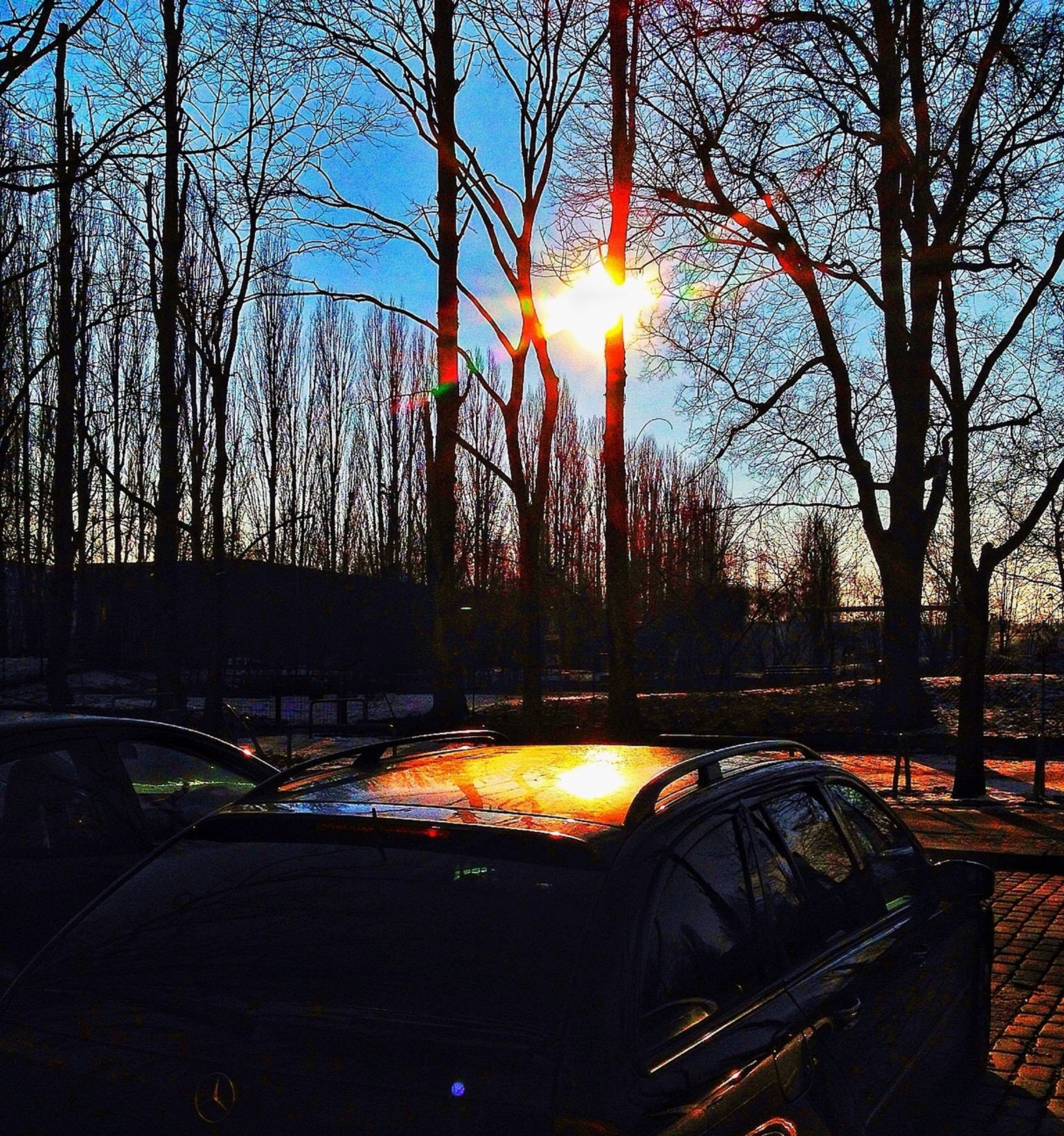 sunset, sun, tree, sunlight, sunbeam, orange color, silhouette, glowing, bare tree, sky, lens flare, burning, nature, flame, transportation, fire - natural phenomenon, outdoors, no people, car, tranquility