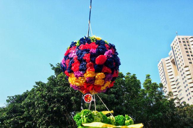 Festival Hanging Colorful Brighter Day Festive Festive Decor GJ UI 2016 Sunny Day Happy Day